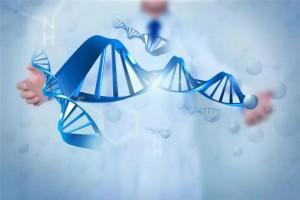 前期肺癌手术后需要做基因检测吗