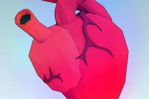 科学家发现人体新器官遍布全身充当内置减震器