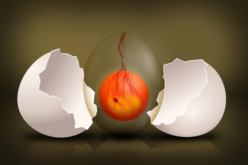 辟谷早上可以吃鸡蛋吗辟谷的注意事项