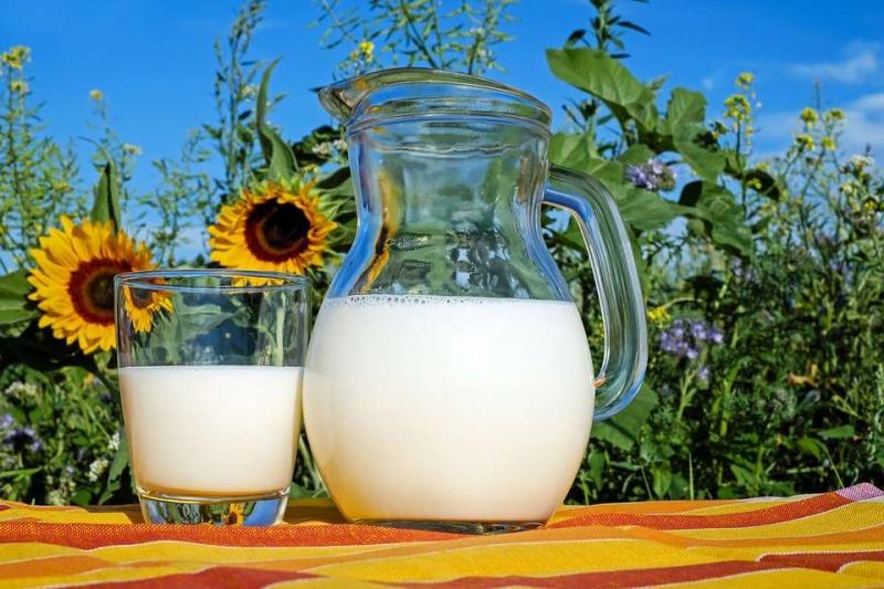 早上空腹喝牛奶拉肚子怎么回事空腹喝牛奶好吗