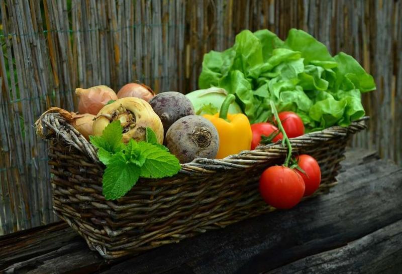 维生素吃了有什么作用日常生活中哪些食物中含维生素丰富